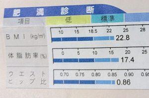 トレーニング14日目 体脂肪率