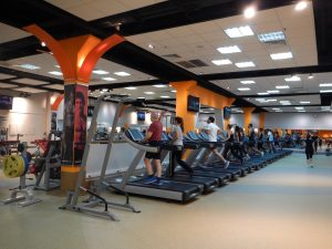 動ける体作り&トレーニング基礎